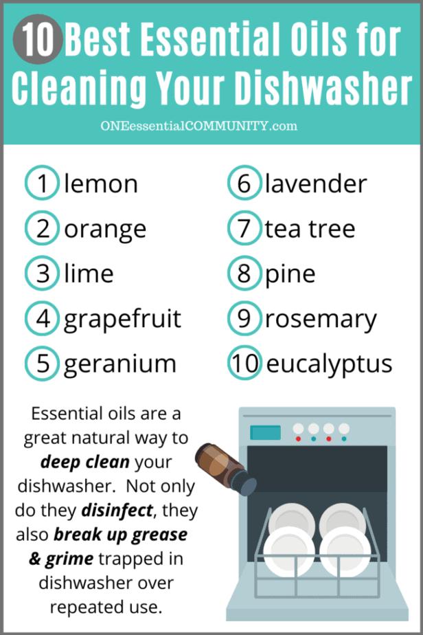 10 best essential oils for cleaning your dishwasher (lemon, orange, lime, grapefruit, geranium, lavender, tea tree, pine, rosemary, eucalyptus)