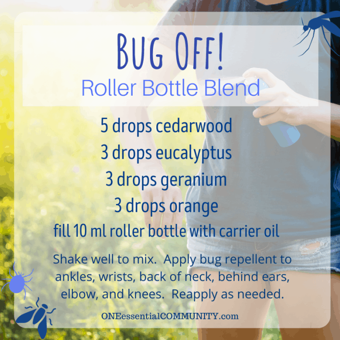 Bug Off! roller bottle blend by oneessentialcommunity.com -- 5 drops cedarwood, 3 drops eucalyptus, 3 drops geranium, and 3 drops orange essential oil, then fill 10ml roller bottle with carrier oil. shake well to mix. apply bug repellent to ankles, wrists, back of neck, behind ears, elbows, and knees. reapply as needed.