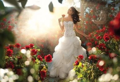 Belle Forrás:http://www.alfredangelo.com