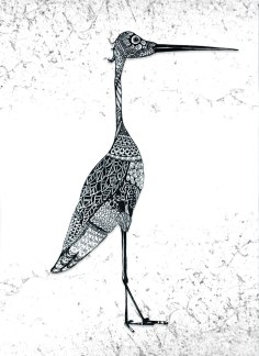 Sketchbook bird