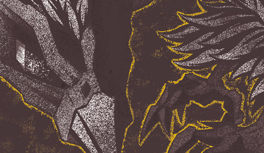 black-phoenix-poster-cu02-mrhass