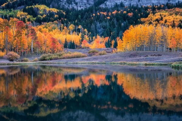 Clear Lake Reflection Colorado Wall Art Fine Prints