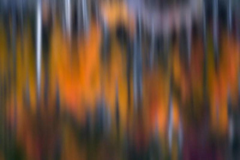 Blurry Fall Colors Reflection Colorado
