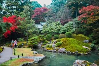 Shoren-in Garden in Autumn