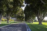 veterans-cemetery-westwood-101514-121-850px
