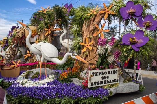 rose-parade-floats-010216-014-C-700px