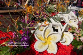 rose-parade-floats-010216-122-C-700px