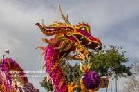 rose-parade-floats-010216-139-C-700px