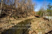 crystal-bridges-museum-2017-141-c-500px