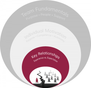 The Architecture of Highly-Effective Teams: Exceptional Team Leaders and Key Relationships