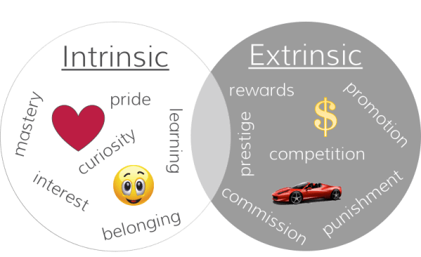intrisic and extrinsic motivation