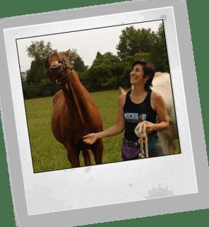 Sandy-horse-polaroid