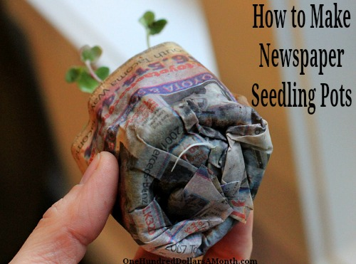 How to Make Newspaper Seedling Pots