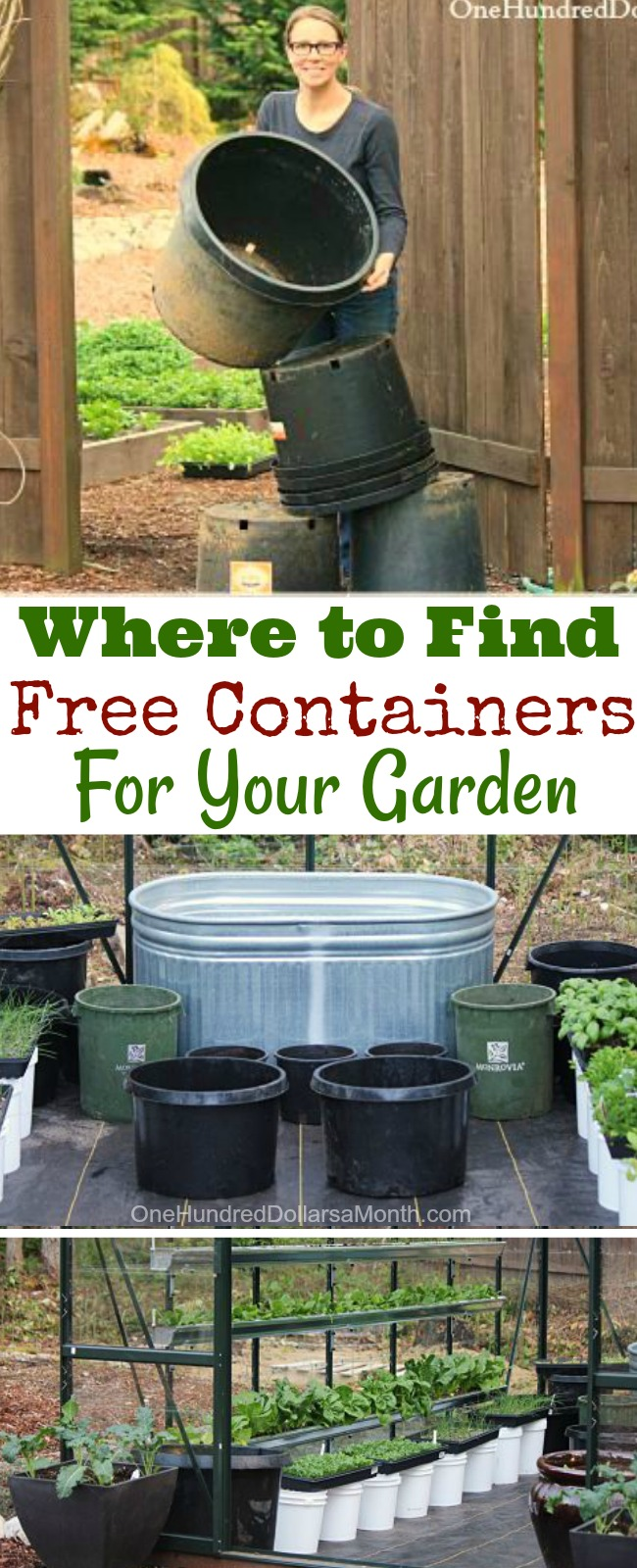 how to find free containers for your garden one hundred dollars a month. Black Bedroom Furniture Sets. Home Design Ideas