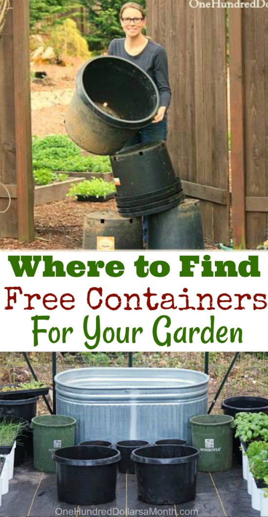 How to Find Free Containers For Your Garden - One Hundred Dollars a