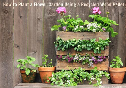 how to plant a flower garden. How To Plant A Flower Garden Using Recycled Wood Pallet