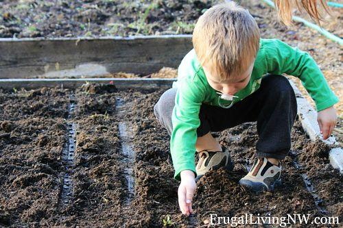 teaching children to garden