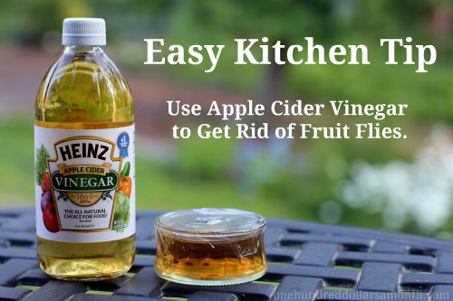 easy kitchen tips how to get rid of fruit flies one hundred dollars a month. Black Bedroom Furniture Sets. Home Design Ideas