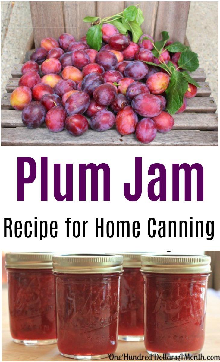 Canning 101 Cinnamon Plum Jam Low Sugar Recipe One Hundred