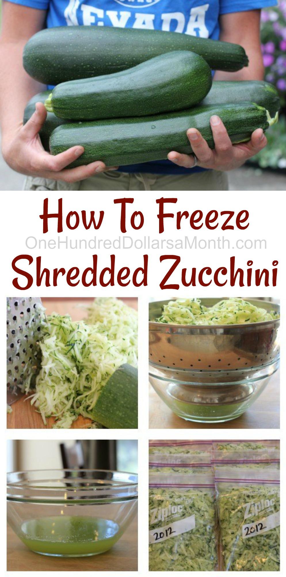 Mavis Garden Blog How To Freeze Shredded Zucchini e Hundred