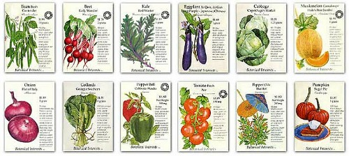 botanical-interests seed packets