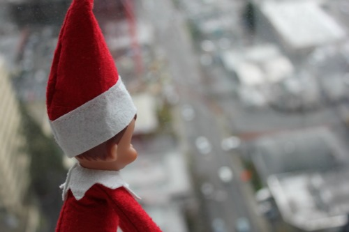 elf on the shelf city