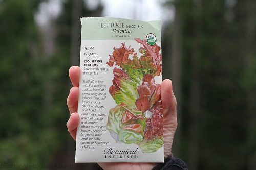 mesclun lettuce seed packet botanical interests