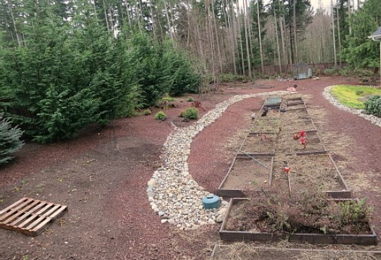 raised garden beds one hundred dollars a month