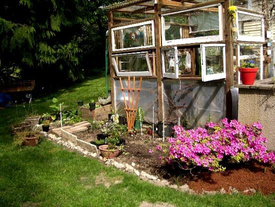Kitchen garden5-16 kit garden