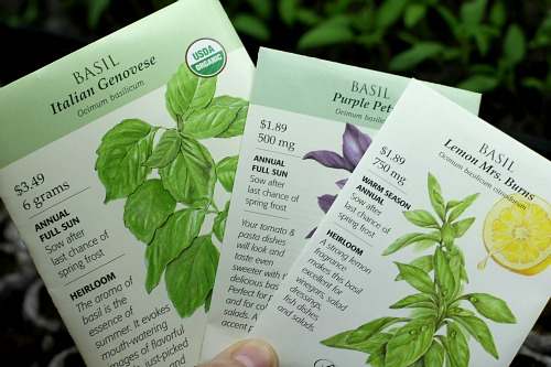 basil seed packets