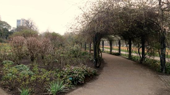 hyde park london arched trellis