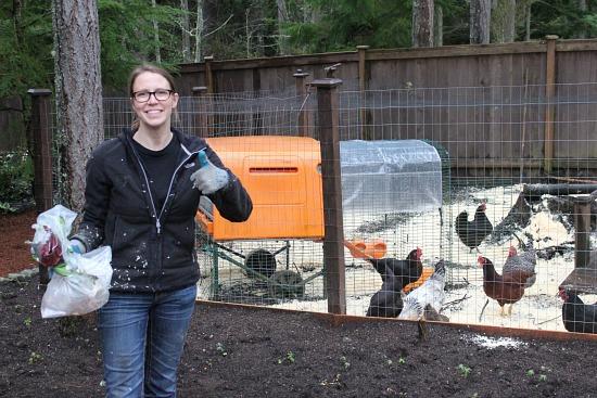mavis butterfield raising chickens