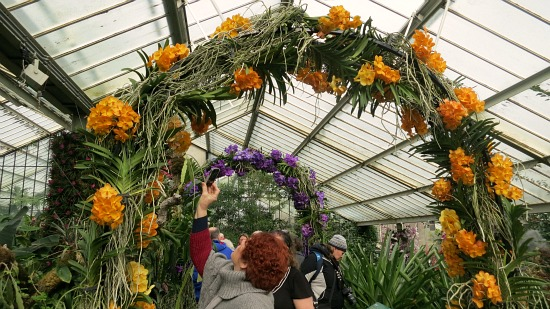 orchid arch kew gardens