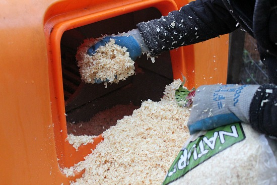 pine shavings chicken bedding