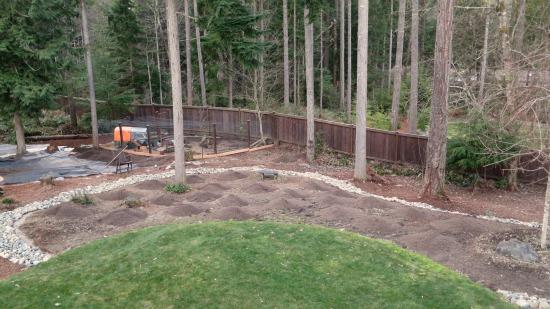wooded backyard garden photos