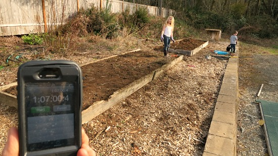 garden clean up