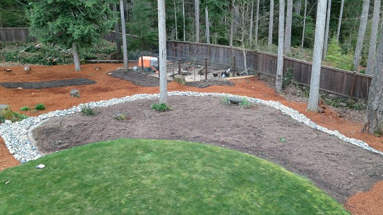 garden on a wooded lot
