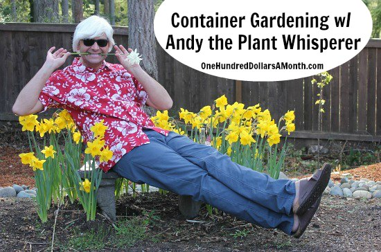Container-Gardening-with-Andy-Plant-Whisperer
