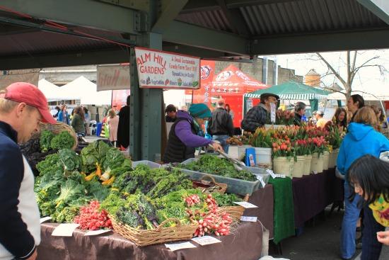 alm hill gardens bellingham farmers market