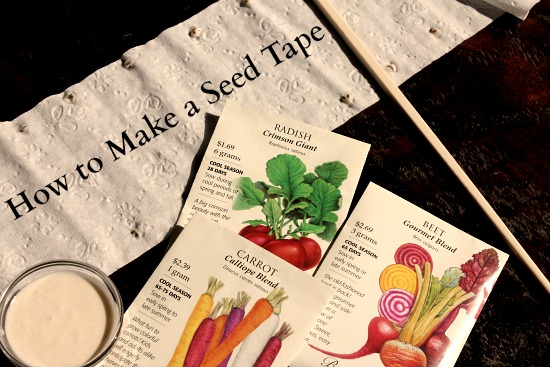 how to make a seed tape
