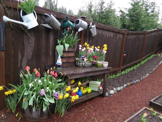 mavis garden blog peas along the fence
