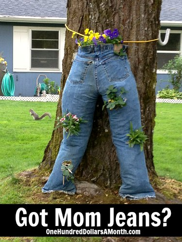 mom jeans container gardening ideas