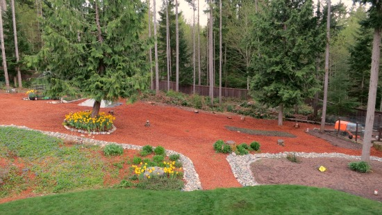 wooded backyard red mulch bark