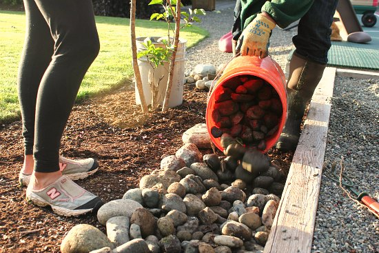 making a rock border