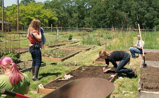 JBLM Community Garden  mavis ryan miriam holly