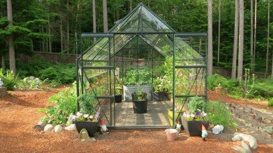 magnum glass greenhouse
