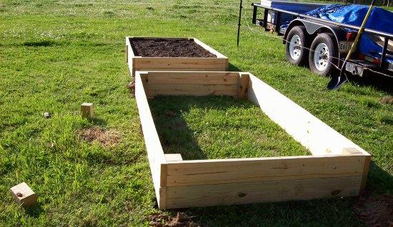 rasied garden beds