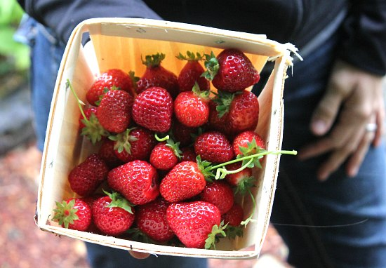 strawberries in wooden box