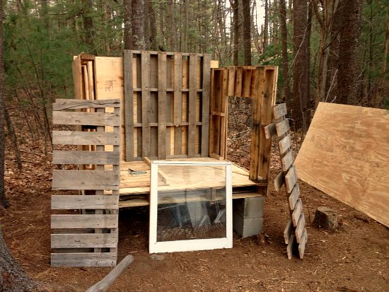 wood pallet chicken coop