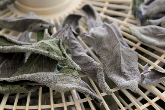 how to dehydrate sage
